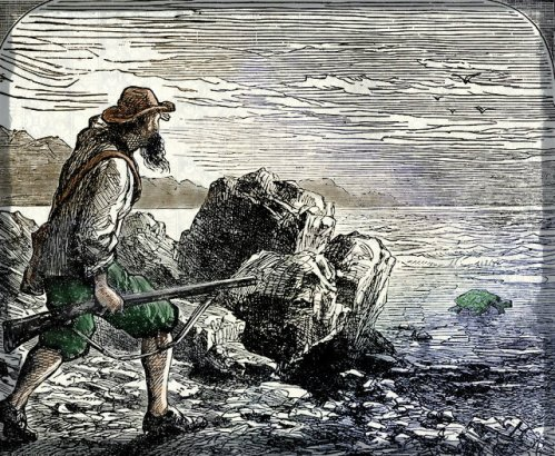 Robinson Crusoe Sees a Turtle