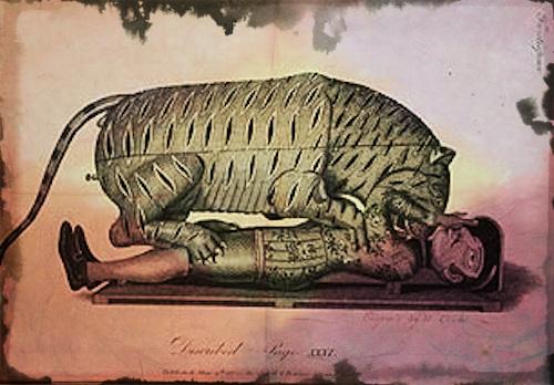 Tipu's_Tiger_Salmond