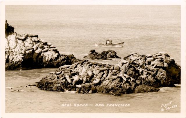 Postcard from Seal Rocks, San Francisco, California.