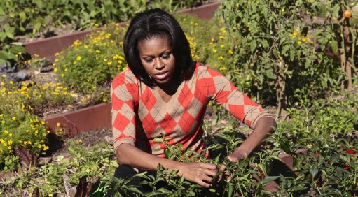 Michelle Obama in the White House vegetable garden (click for source: NPR)