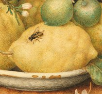 "detail from Giovanna Garzoni's ""Bowl of Citrons"" (ca 1640)"