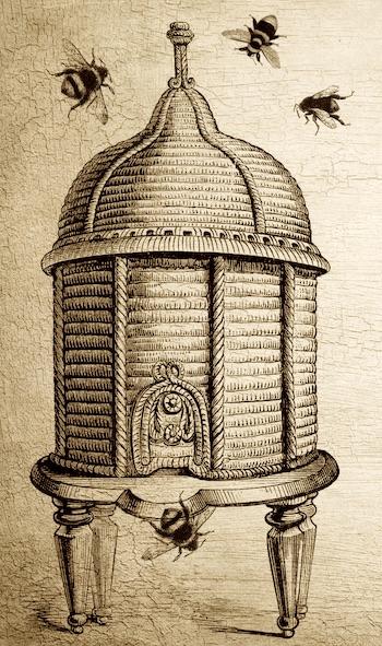 bee-hive-paris